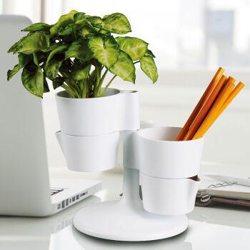 oasso 多功能办公笔筒 创意时尚收纳盒植物盆栽花盆摆件 送种子营养泥